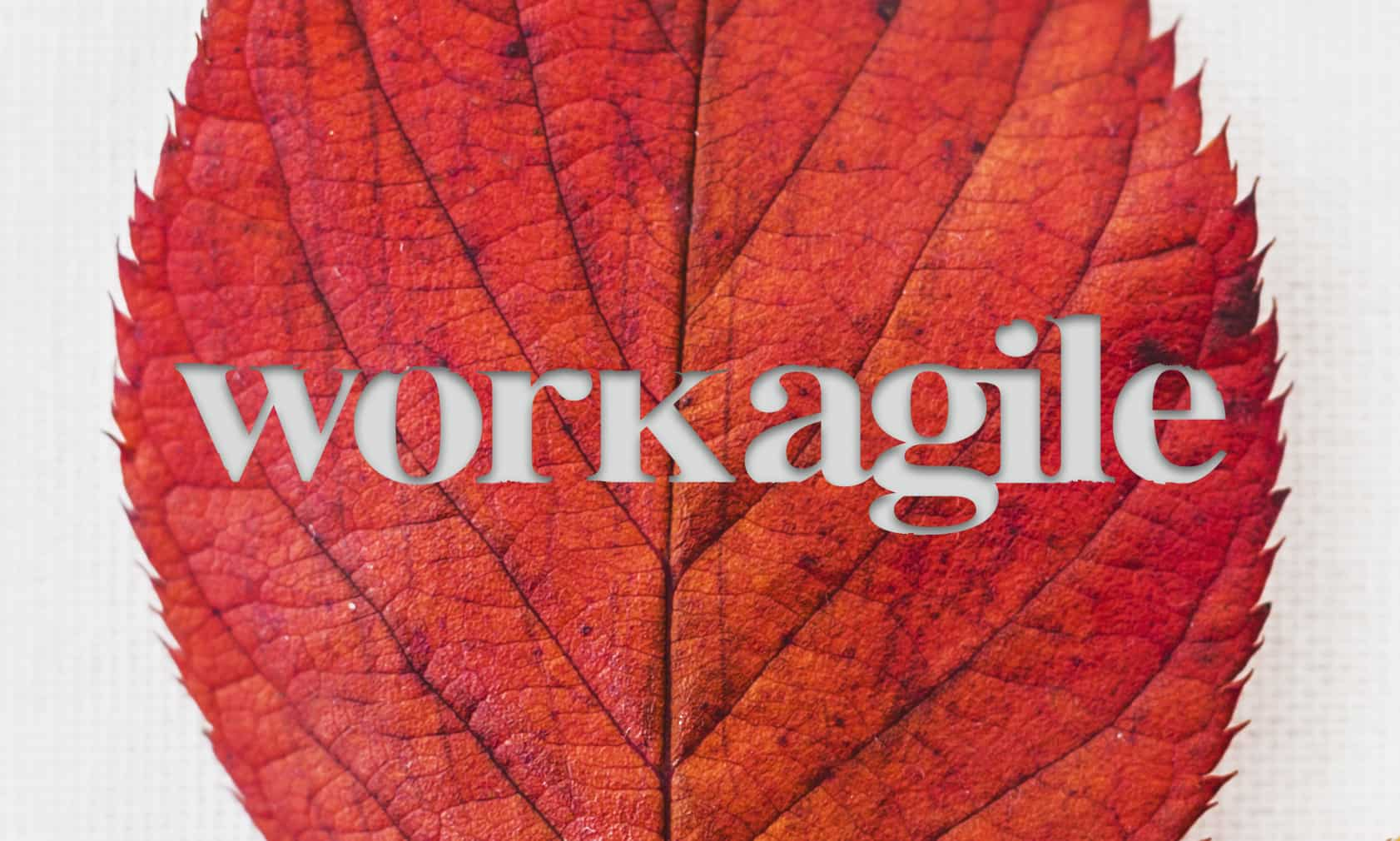 Workagile logo etched in an autumn leaf